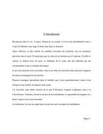 Rapport De Stage Intersport 3ème Rapport De Stage